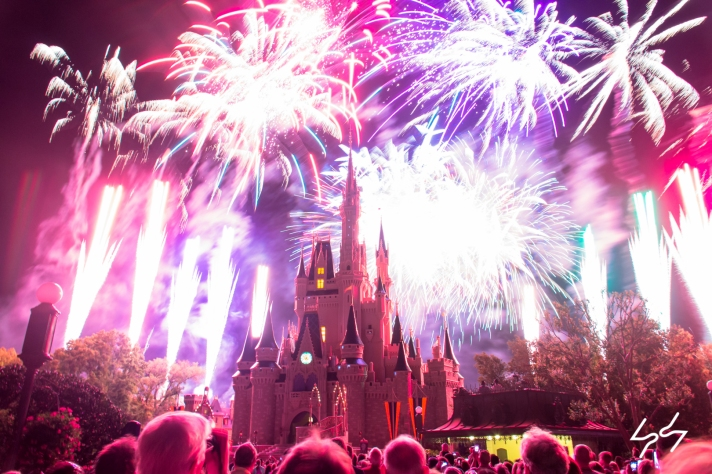 Magic Kingdom Wishes 1